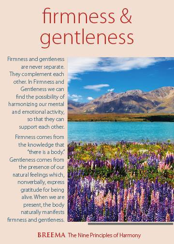 firmness and gentleness